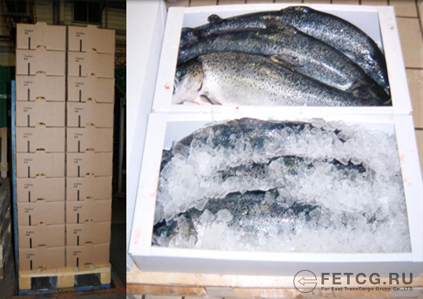 Customs clearance of fish products for export to China at the Zarubino port and Kraskono port